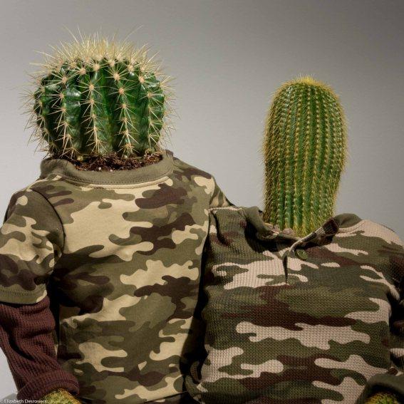 2016-Desrosiers-CactusCouple